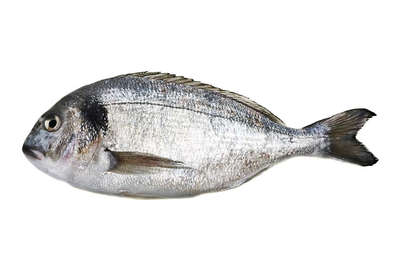 04. Fleisch und Fisch - viande et poisson